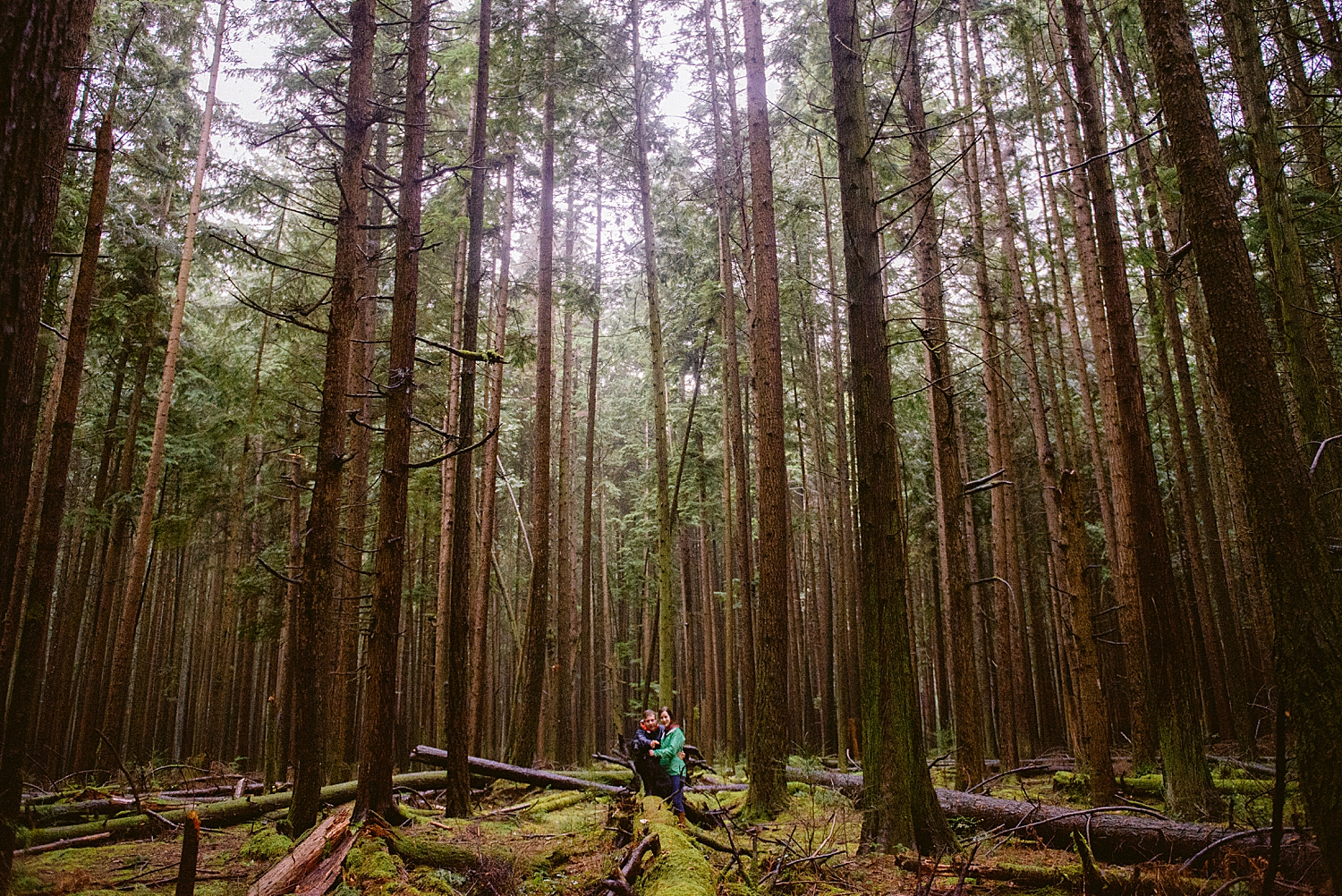 british columbia - pacific spirit park - engagement shoot - vancouver b.c.- maylies lang photography -04.jpg