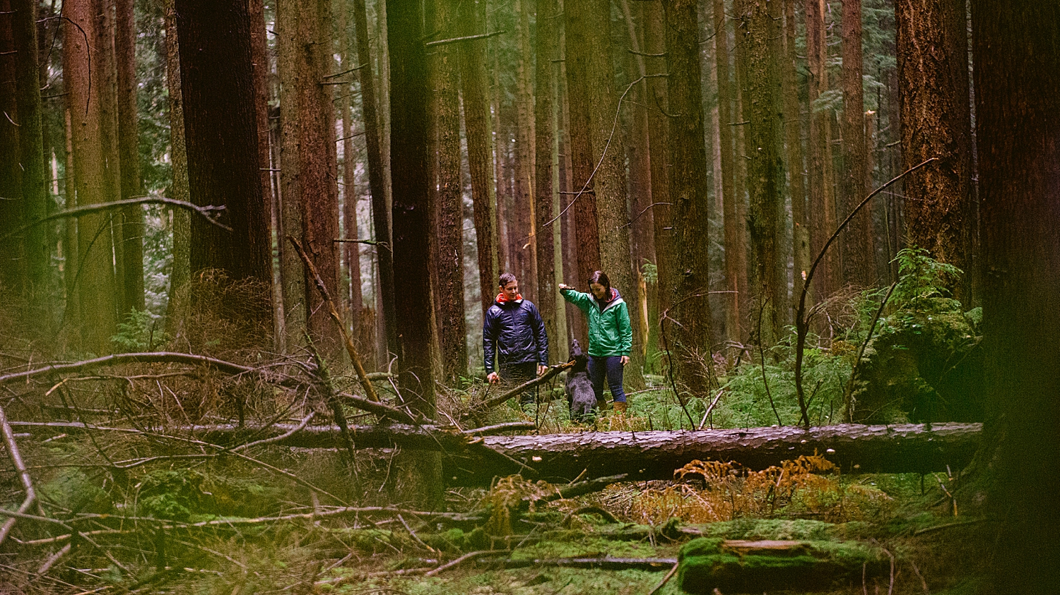 british columbia - pacific spirit park - engagement shoot - vancouver b.c.- maylies lang photography -13.jpg