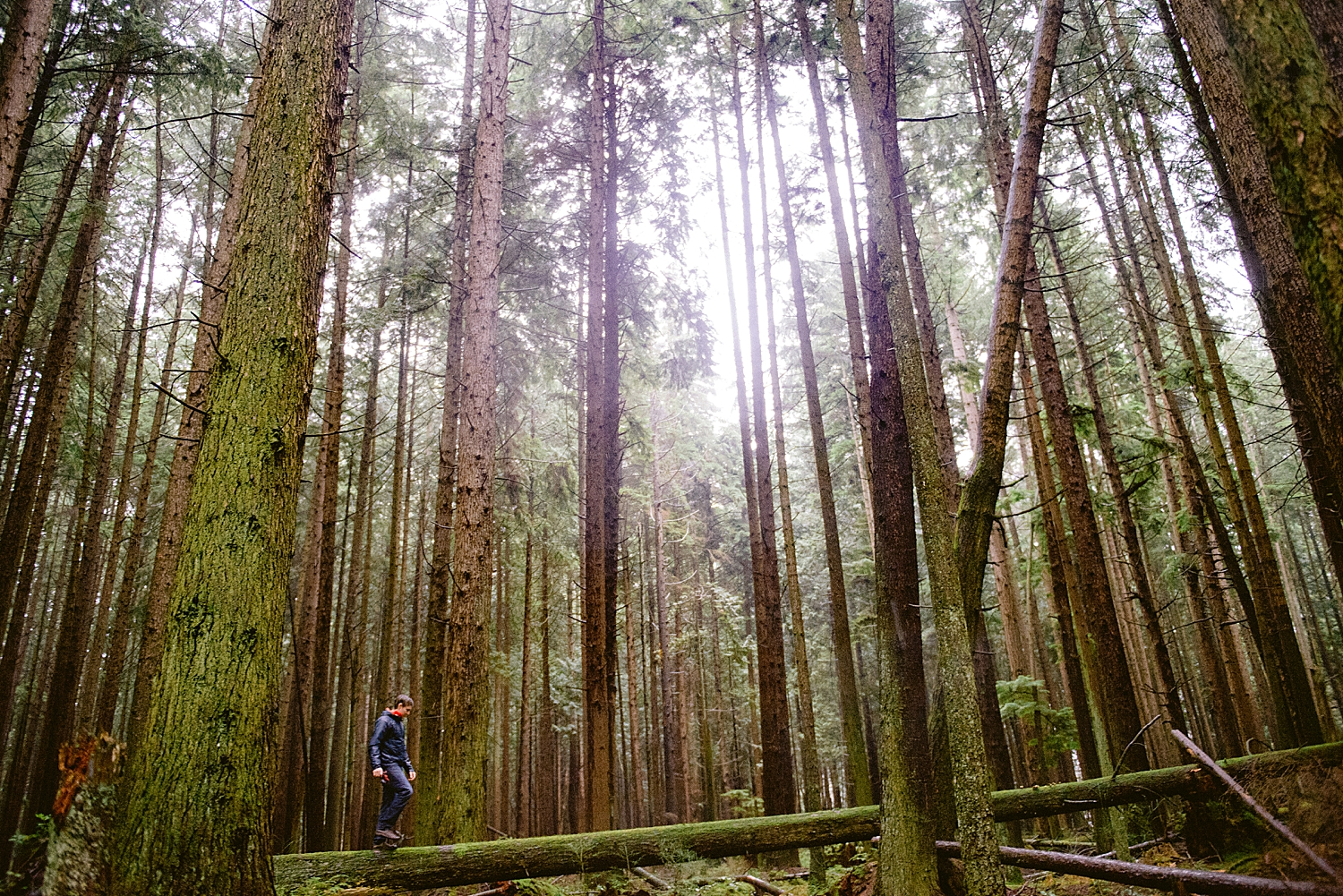 british columbia - pacific spirit park - engagement shoot - vancouver b.c.- maylies lang photography -15.jpg